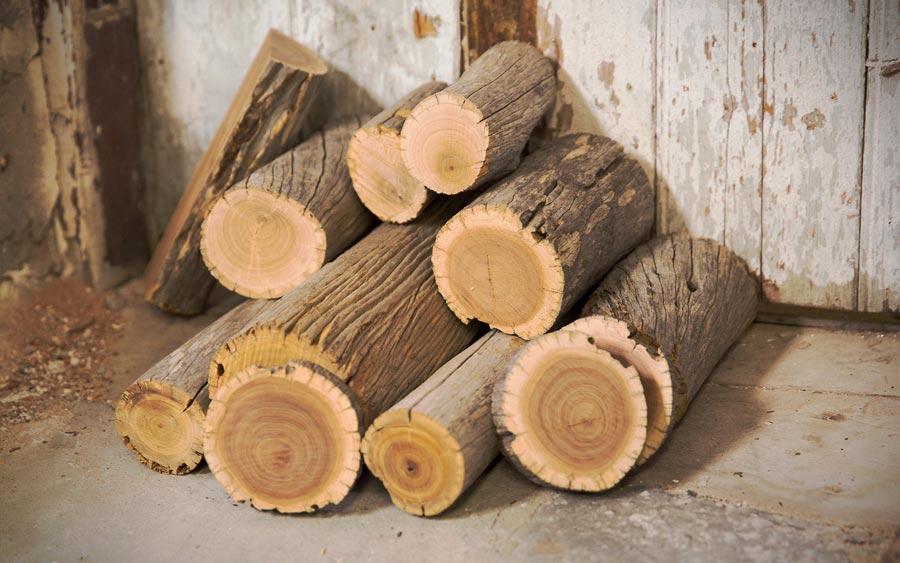چوب صندل Sandalwood  