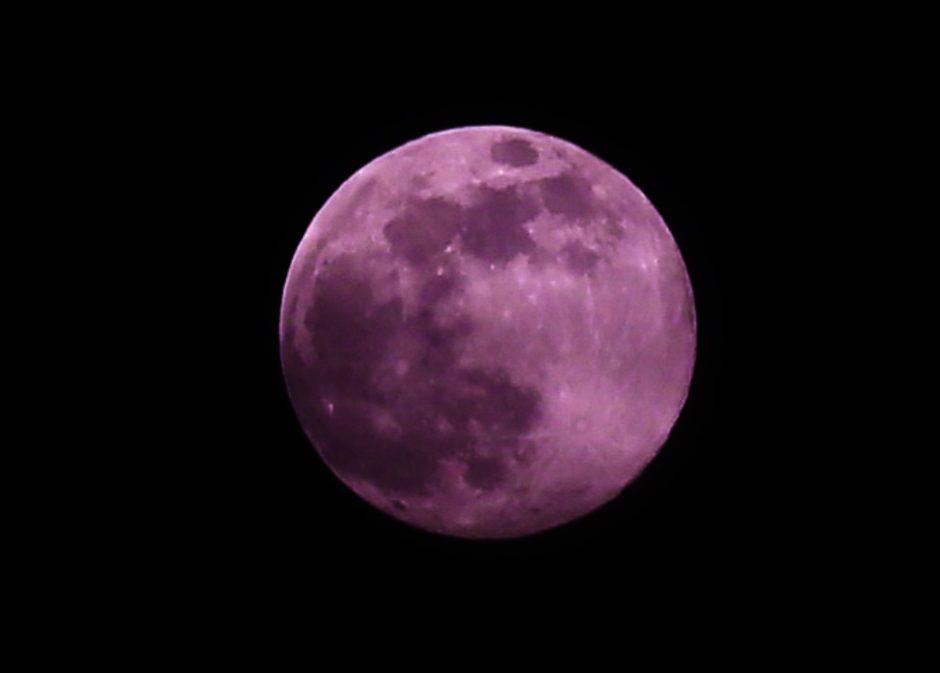 ابر ماه یا ماه صورتی فردا در سراسر دنیا قابل رؤیت خواهد بود - چیکاو