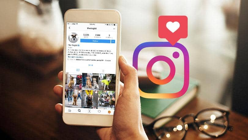 شبکه اجتماعی اینستاگرام - چیکاو